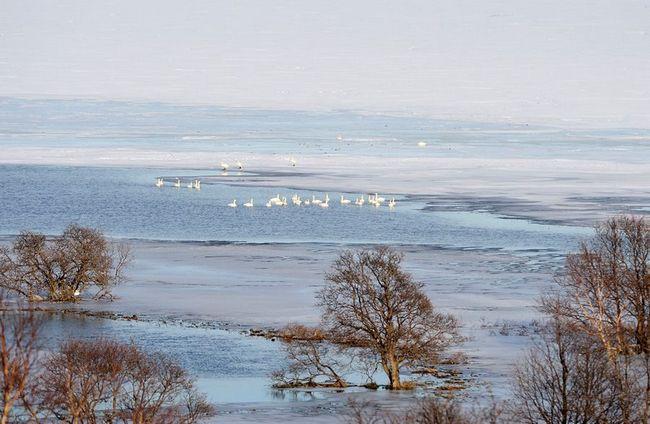 Ловля коропів на озері тисячі островів