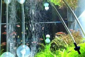 Аерація води в акваріумі