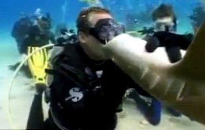 Акули нападають на людей не так часто, як люди схильні вважати. А число смертей від таких нападів взагалі мізерно