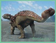 Анкилозавр / ankilosaur