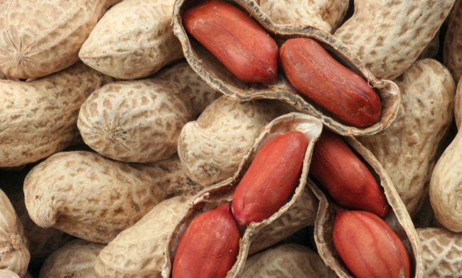 вирощування арахісу