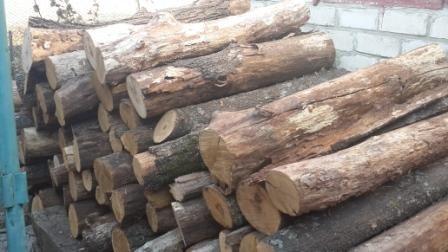 Бізнес на дровах