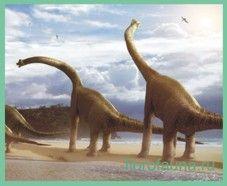 Брахіозавр / brahiosaur