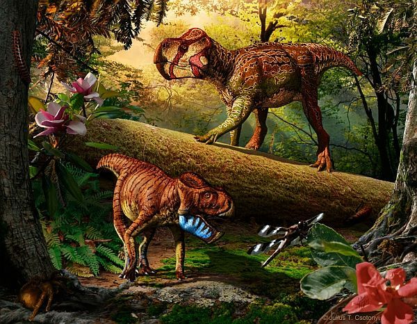 Рогаті динозаври, що жили 75 млн років тому в канадській Альберті (зображення Julius T. Csotonyi).