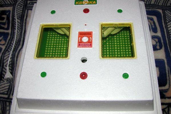 Корпус інкубатора зроблений з міцного пинопласта