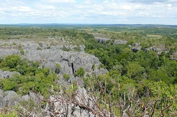 Дика природа острова Мадагаскар