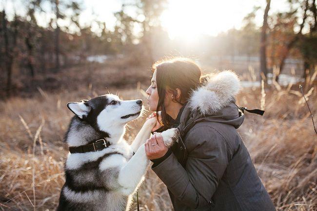 . Собаку не дарма вважають найкращим другом людини.