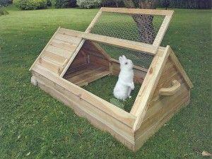Будиночок для кроликів фото