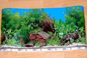 Фон для акваріума