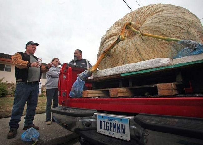 Дон Янг (зліва) з Де Мойн, штат Айова чекає в черзі на зважування на Конкурсі на найбільший гарбуз у Хаф Мун Бей 12 жовтня 2009 року. (UPI / Terry Schmitt)