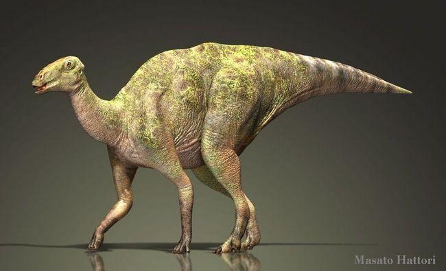 Гадрозавр (лат. Hadrosaurus)