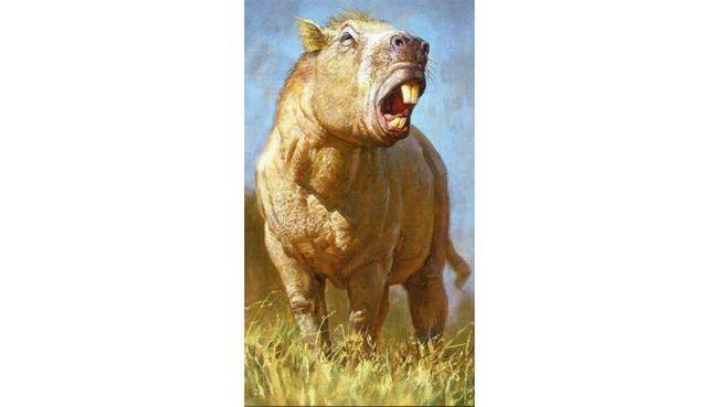 Гігантські гризуни давнини використовували різці як бивні