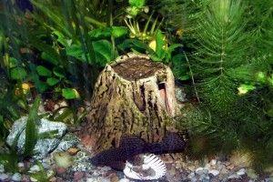 Грот для акваріума своїми руками