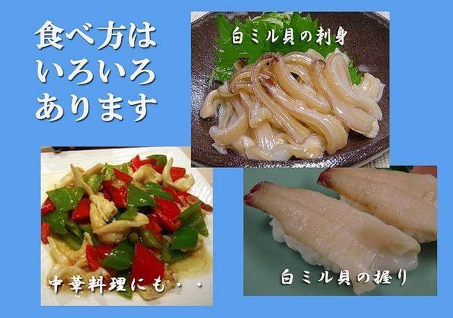 Особливо популярний цей молюск у японських гурманів