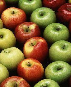 Зберігання яблук і груш. Як і де краще зберігати яблука та груші