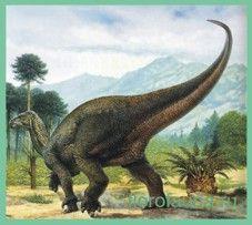 Ігуанодон / iguanodon