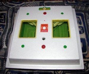 Інкубатор «квочка». Прекрасне пристрій для невеликого фермерського господарства!
