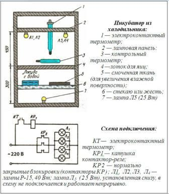 інкубатор з холодильника