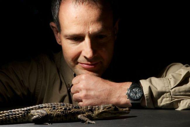 На Філіппінах впіймали найбільшого гребенястого крокодила