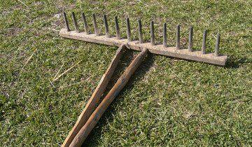 Фото дерев`яних садових грабель, wikimedia.org