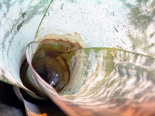 Вода в розетці ехмеі