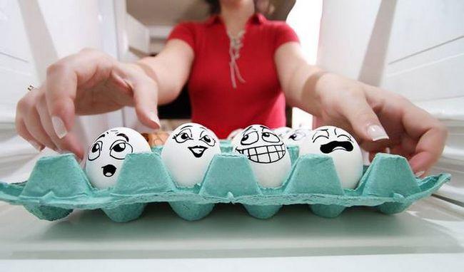 Самі незвичайні яйця тварин