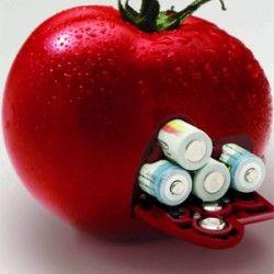 Елементи живлення необхідні для рослини