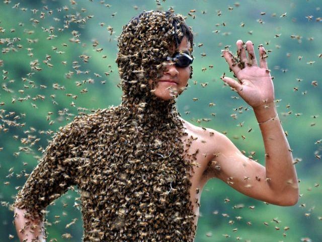 Китайця обліпили 26 кілограм бджіл