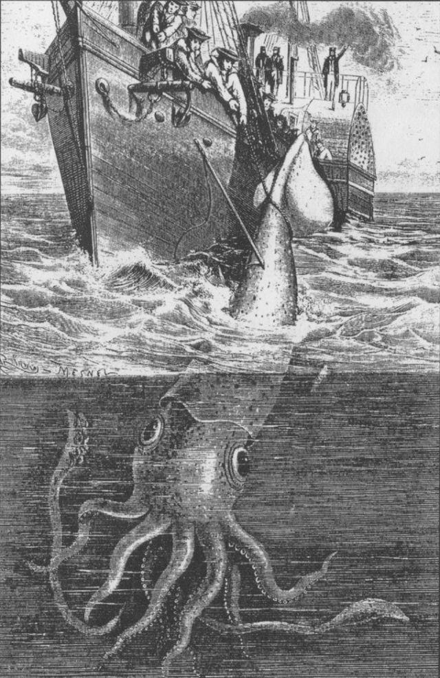 Величезні очі кальмарів здавна привертали увагу моряків: на цій картині XIX століття вони подані з деяким перебільшенням. (Ілюстрація Harper Lee`s Sea Monsters Unmasked, London, 1884.)