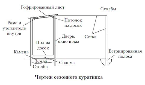 Як спланувати будівництво будиночка для двадцяти курей