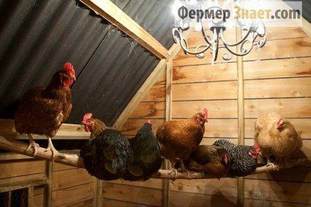 Схема установки вентиляції в курнику