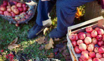 Сортування, hearthandmadeuk.blogspot.com