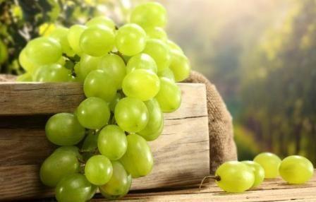 Як зберегти виноград