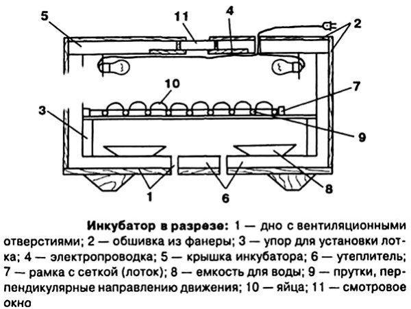 Креслення апарату для штучного виведення курчат
