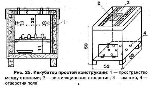 Креслення, який допоможе зробити інкубатор для перепелів своїми руками