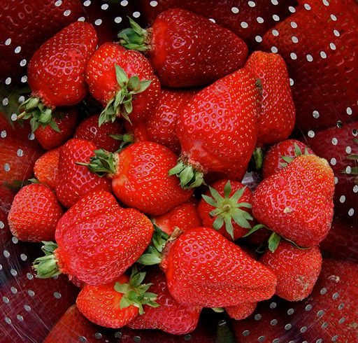 Як збільшити врожайність полуниці?
