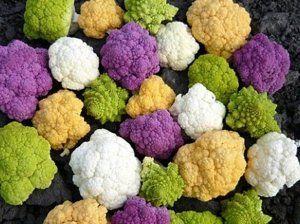 Як виростити кольорову капусту: правила та поради