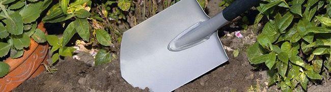 Яке значення має ширина багнетної лопати та інші секрети вдалого інструменту