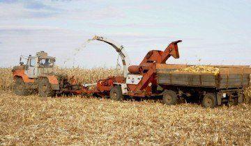 Збирання кукурудзи в качанах, land-tech.net