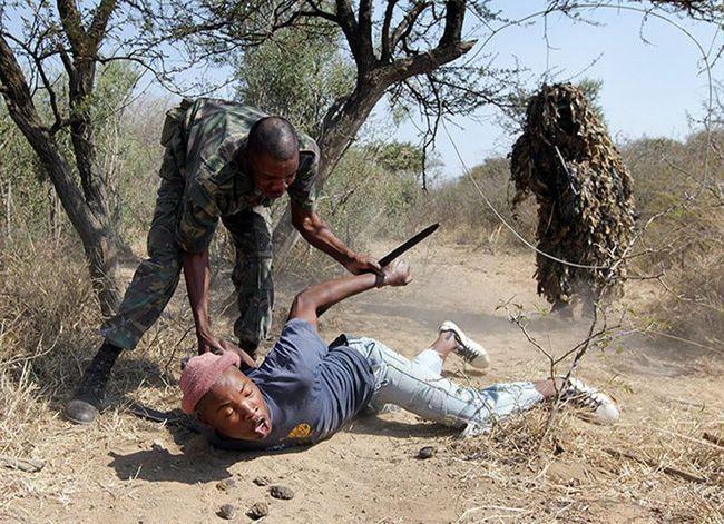 Кривава війна Африки з браконьєрством