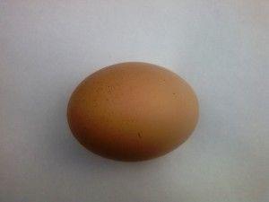 Курине яйце