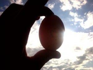 Домашні курячі яйця