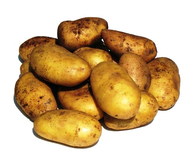 Kartofel`_nevskij