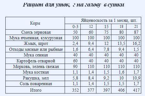 Таблиця: раціон годування качок несучок