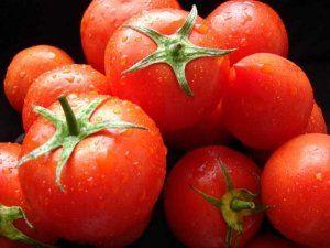 Високоврожайні сорти томатів