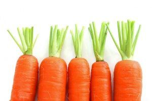 Кращі сорти моркви для Сибіру