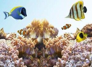 Морський акваріум