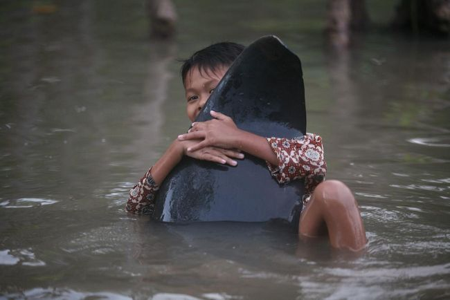 Діти не усвідомлюючи трагедії обіймали тварин за плавники.