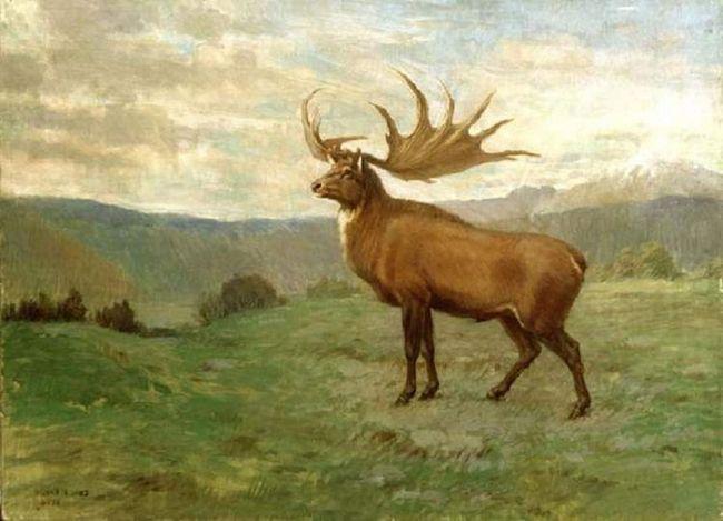 Большерогий олень - предок всіх оленів.