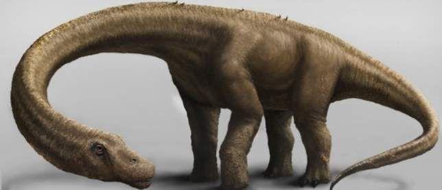 Виявлено найбільший динозавр, коли-небудь жив на Землі.